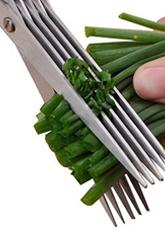 Ножиці для нарізки зелені (для кухні)