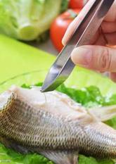 Щипці для видалення кісток риби (для кухні)